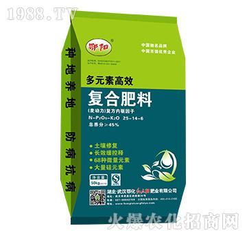 多元素高效合肥料25-14-6-鄂阳-红太阳