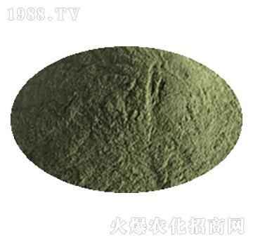 绿色木霉菌-中向启明