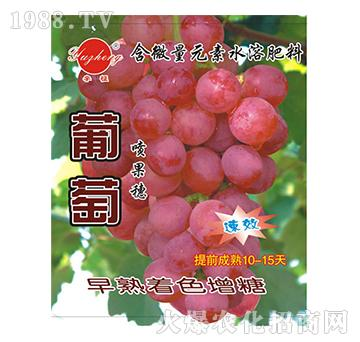 葡萄喷果穗专用-含微量元素水溶肥料-宇征生物