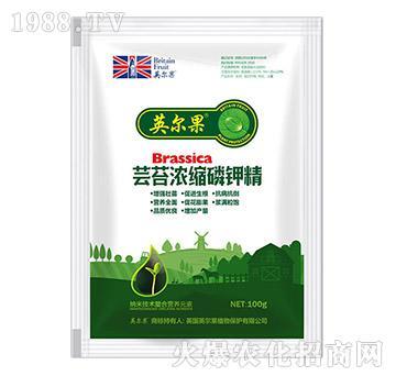 100g芸苔浓缩磷钾精-英尔果
