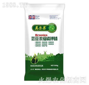 500g蕓苔濃縮磷鉀精-英爾果