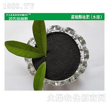 腐植酸硅肥(水溶)-领先腐植酸
