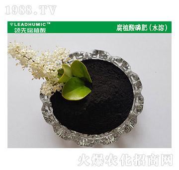 腐植酸磷肥(水溶)-领先腐植酸