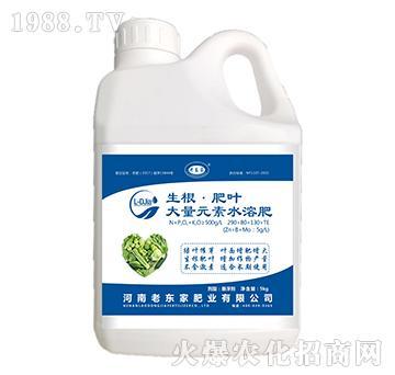 大量元素水溶肥290-80-130+TE-生根・肥叶-老东家