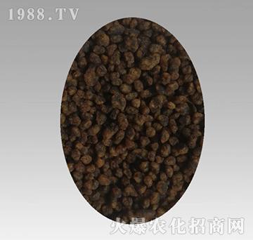 金藻碳-海赞