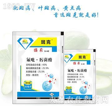 43%氟吡・肟菌酯-斑克-盛禾作物