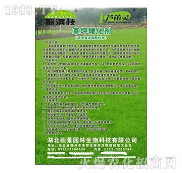 草坪矮化剂-芦笛灵-画景园林