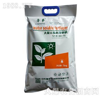 大量元素水溶肥料12-6-40+TE-鲁争生物