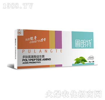 茶桑需配-多肽氨基酸益