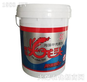 海藻甲壳素型-鼎佳火龙头-日升昌