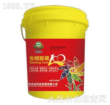 含腐殖酸水溶肥-生根膨果100-先农达