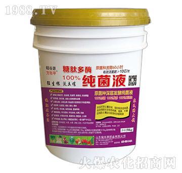 糖肽多酶(紫)-硅谷源