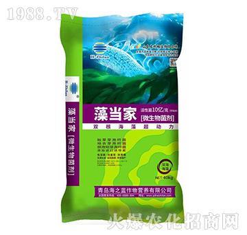 微生物菌剂-藻当家-海之蓝