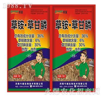 36%草铵・草甘膦(袋装)-权宜-今越生物