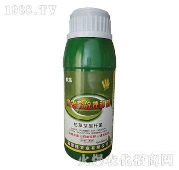 小麦高效拌种剂(绿)-农乐-瑞德隆