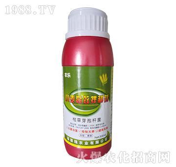 小麦高效拌种剂(红)-农乐-瑞德隆