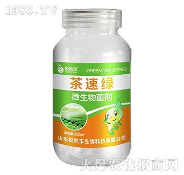 微生物菌剂-茶速绿-悦