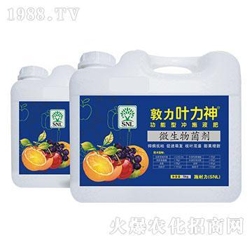 5kg微生物菌剂(桶装)-敦力叶力神-施耐力