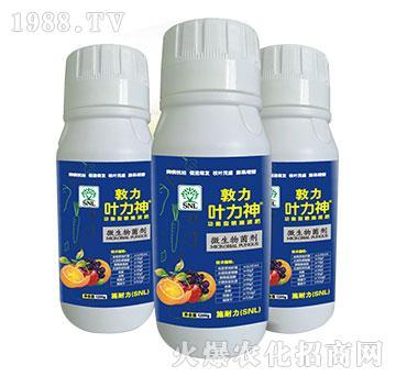 微生物菌剂(瓶装)-敦力叶力神-施耐力