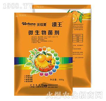 微生物菌剂-溃王-沃肽美