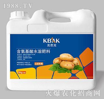 土豆专用含氨基酸水溶肥料(壶)-克芭克