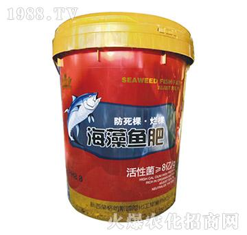 海藻鱼肥-圣派恩
