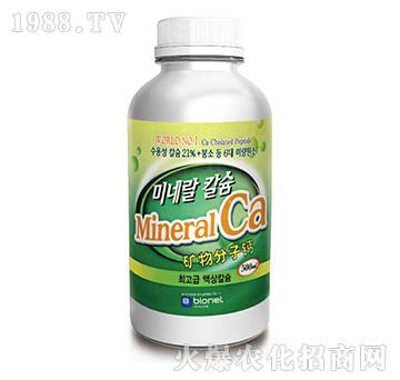 矿物分子钙-地专家