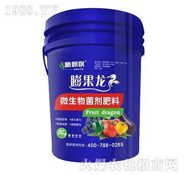微生物菌剂-膨果龙-施保收-艾康作物