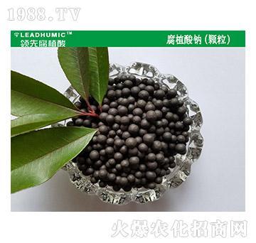 腐植酸钠(颗粒)-领先腐植酸
