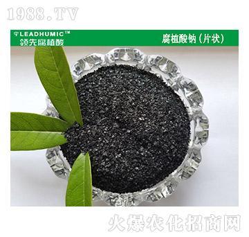 腐植酸钠(片状)-领先腐植酸