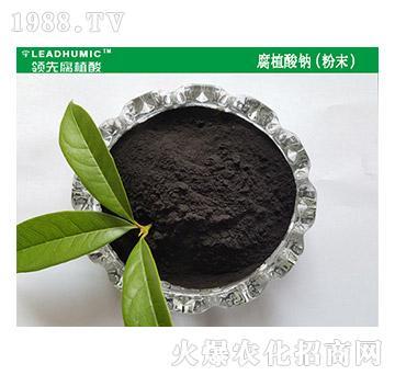 腐植酸钠(粉末)-领先腐植酸
