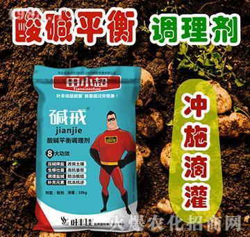 酸堿平衡調理劑(袋)-堿戒-葉豐佳超能量