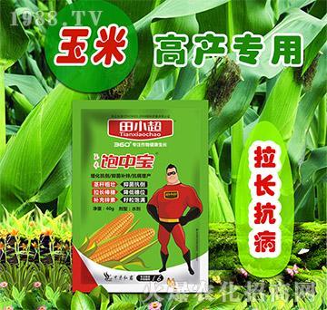 玉米饱中宝-田小超