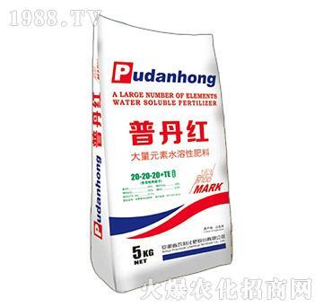 大量元素水溶肥20-20-20+TE-普丹红-农利