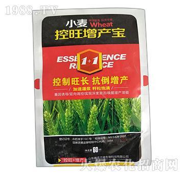 小麦控旺增产宝-康丰农业