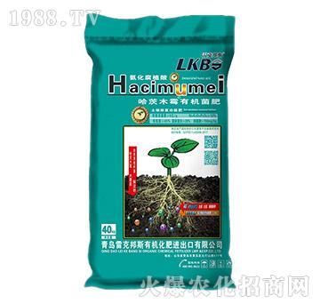 哈茨木霉有机菌肥-雷克邦斯