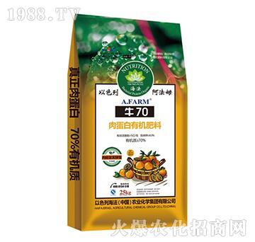 肉蛋白有机肥料-牛70-海法