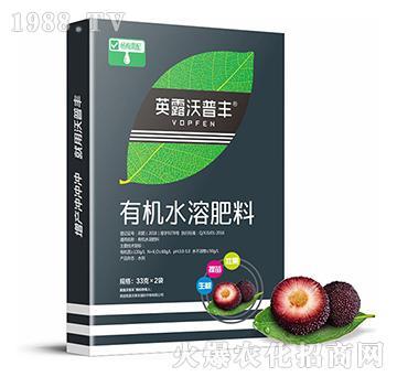 杨梅专用-有机水溶肥料