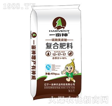 碳酶黄腐酸复合肥12-