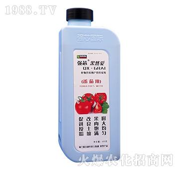 番茄專用強芯果然愛-強芯國際