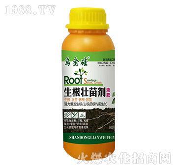 生根壮苗剂液肥-乌金硅