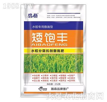 水稻分蘖抗倒撒施肥-矮饱丰-瀚森农业
