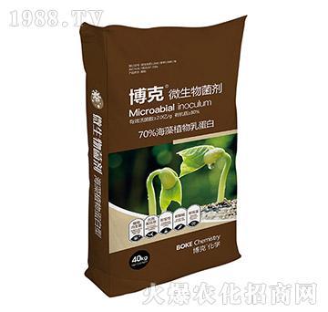 70%海藻植物乳蛋白-微生物菌剂-博克