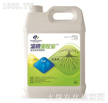 复合微生物肥料-灌根重茬宝-大行农业