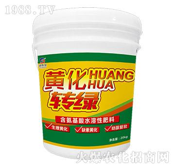 含氨基酸水溶肥料-黄化