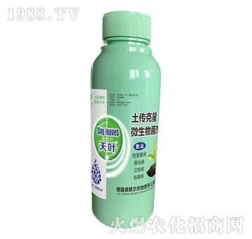 微生物菌剂-土传克星-