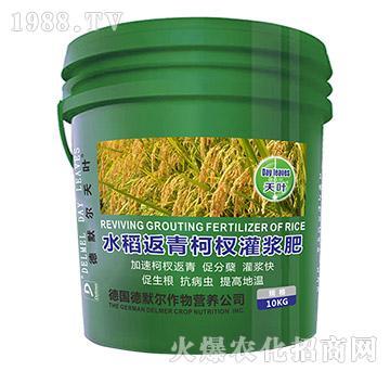 水稻返青柯杈灌浆肥-德默尔