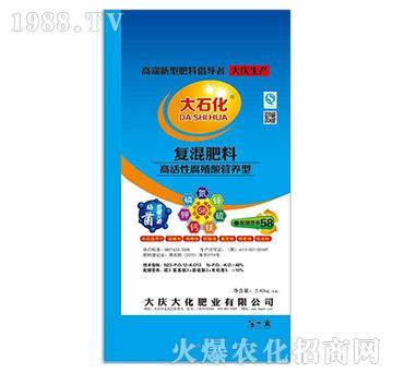 高活性腐殖酸营养型-复混肥料(40kg)-大庆大化