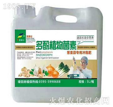葱姜蒜专用冲施肥-多酚植物菌素-漯康壮-绿田地