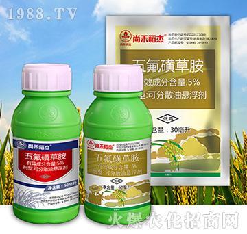 5%五氟磺草胺-尚禾稻